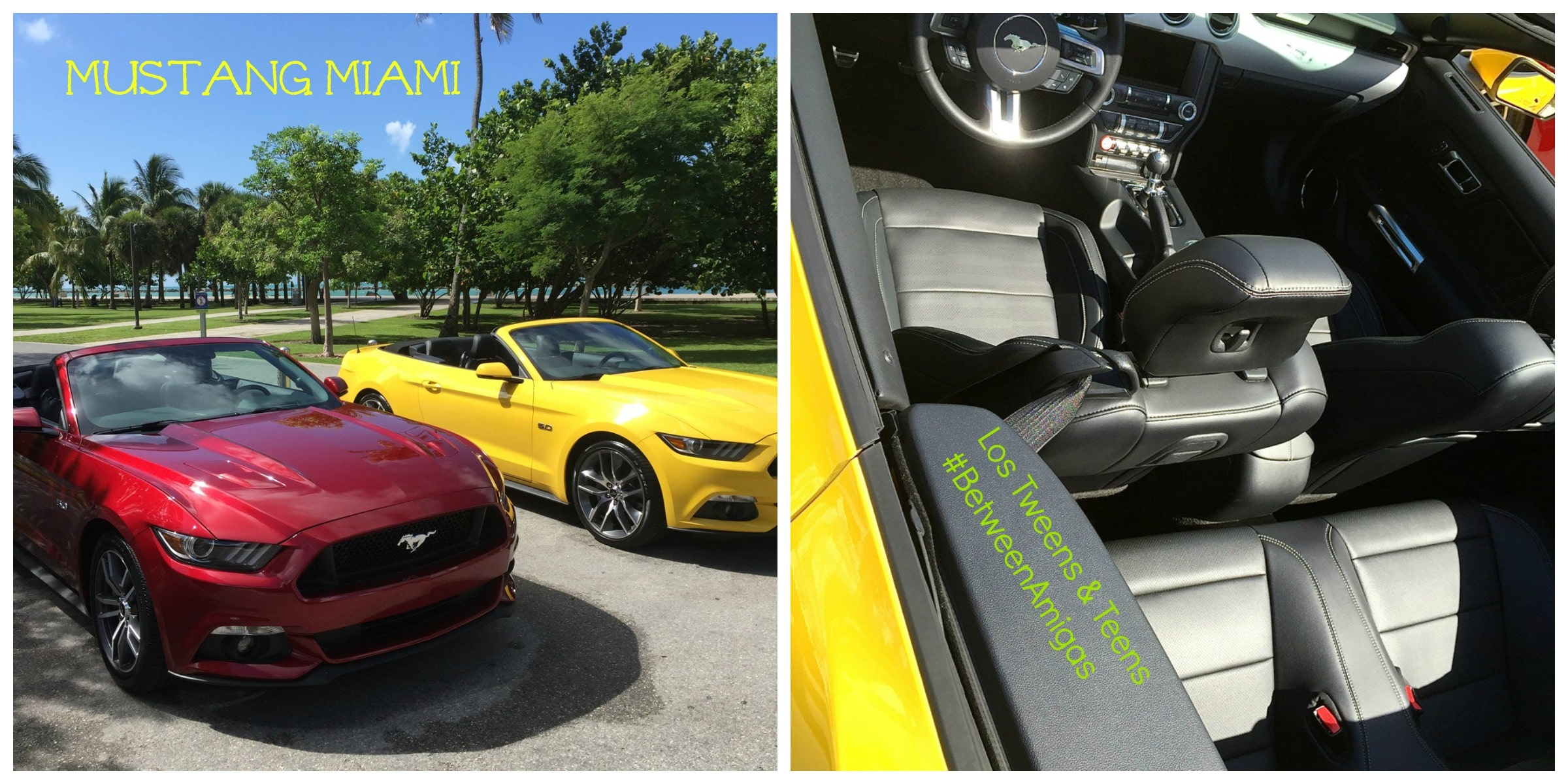 Mustang Collage