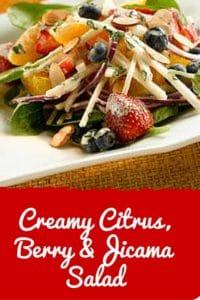 Creamy citrus berry jicama salad