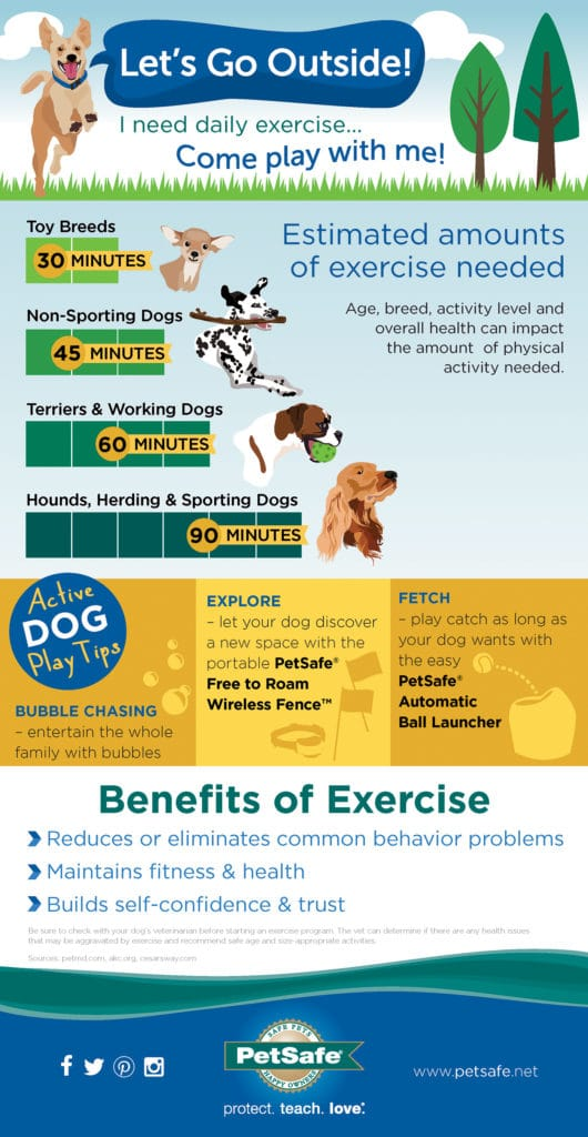 "PetSafe created this Infographic as part of their  ""Let's Go Outside"" Spring Campaign"